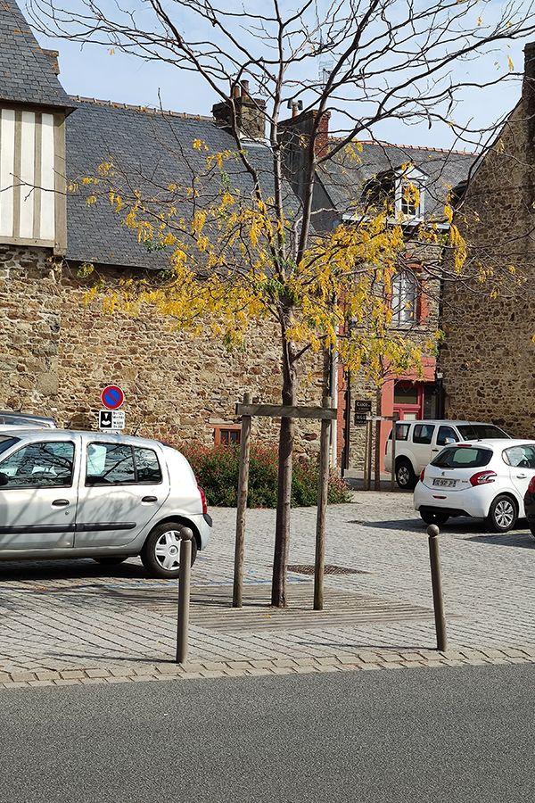 Atelier INEX, Lamballe étude requalification place Mère Rondel