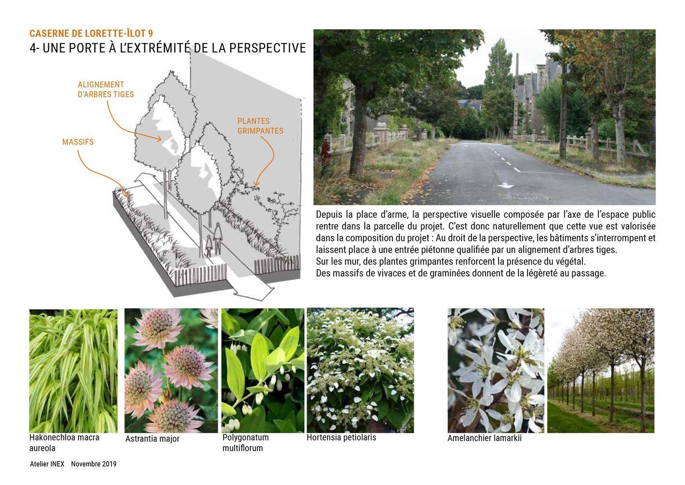 A l'échelle du quartier - Concevoir des projets - Perspective Caserne de Lorette