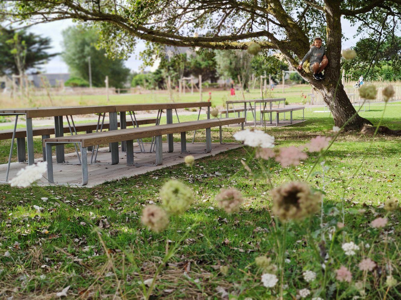 Aménagement de l'ancien camping du Nicet avec espaces pique-nique
