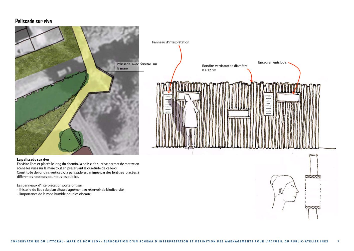 Interprétation Palissade sur rive Mare de Bouillon - Atelier INEX