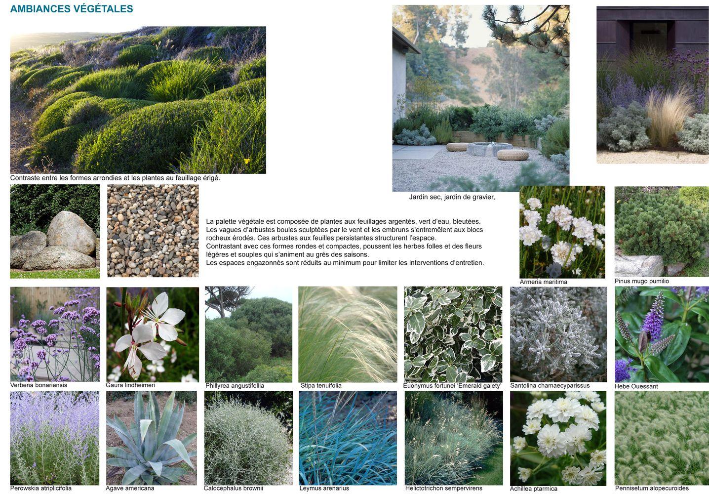 SUNDECK Saint Malo - Ambiances végétales Notice PC plantations Atelier INEX